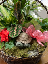 Plant Basket with Turtle