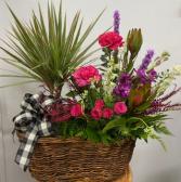 Plant & Fresh flower basket
