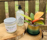 Plant Lady Life  Candle, Soap, and Plant Bundle