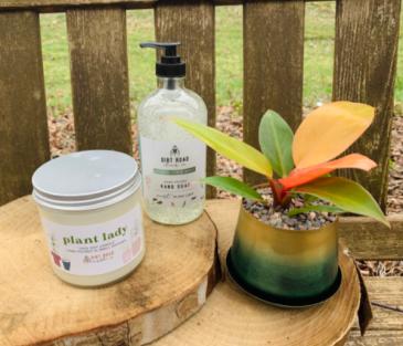 Plant Lady Bundle Candle, Soap, and Plant