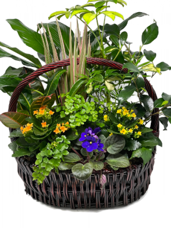 Planter Basket T-9 Planter Garden