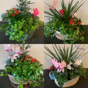 Planter Feb 2021  in Calgary, AB | Petals 'N Blooms