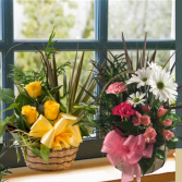 Planter in Wicker Basket with Fresh Flowers Added