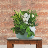 Planter with Angel