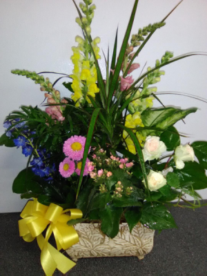 PLANTERS FOR SAME DAY DELIVERY  GREEN AND BLOOMING PLANTS in Norwalk, CA | NORWALK FLORIST