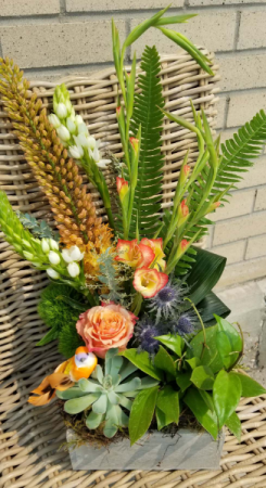 plants and flowers gift