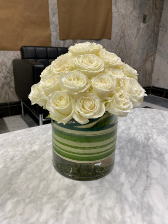 Playa Blanca white Garden Roses
