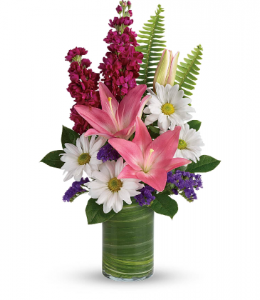 Playful Daisy Bouquet All occasion