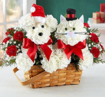 Playful Paws™ for Holiday Arrangement