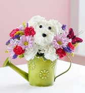 Playful Pup™ 1800Flowers Dog Arrangement