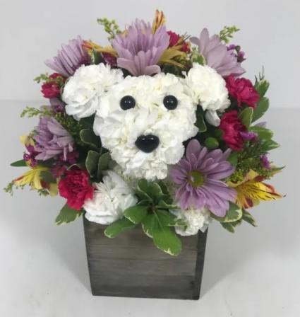 Playful Pup for Fall Arrangement