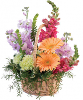 Pleasant Pastel Basket Arrangement