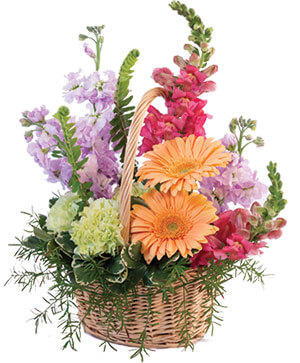 Pleasant Pastels Basket Arrangement in Pelican Rapids, MN | Brown Eyed Susans Floral
