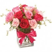 Pleasing Pinks Dozen Roses