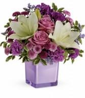 Pleasing Purple HEV451A
