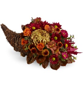 Plentiful PetalsTFWEB450 Fall Flowers