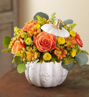 Plentiful White Pumpkin 176878