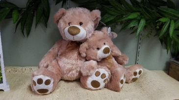 Plush Bear Gift Gift