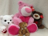 Plush Bears and more.. Bears, kitties, puppies, and more..