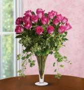 Plush Pink Roses