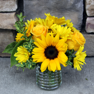 Pocket of Sunshine Get Well Arrangement in Woodinville, WA   Woodinville Florist®