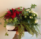 Poinsettia Holiday Planter