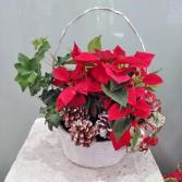 Poinsettia Planter Basket