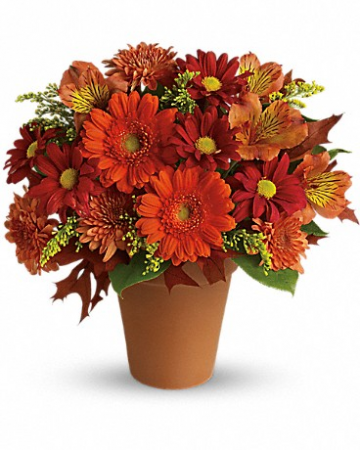 Pot of Posies Fall