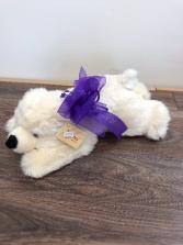 Polar bear hugs?? Cuddly polar bear