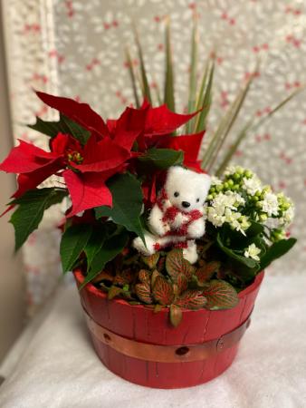 polar bear  planter PLANT