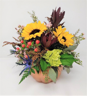 Polished Pumpkin Posies Thanksgiving Arrangement in Springfield, MO | FLOWERAMA #226