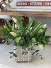 Polka Dot & Tulips
