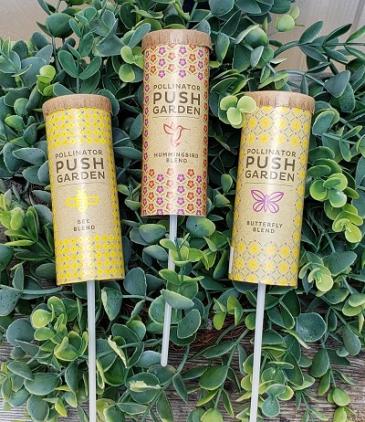 Pollinator Push Garden