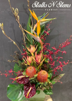 Polly Tropical Wildflower Arrangement in Ceramic Container in Rowville, VIC | Stalks 'N' Stems