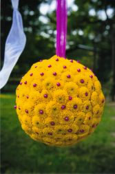 Pomander  Aisle Decoration