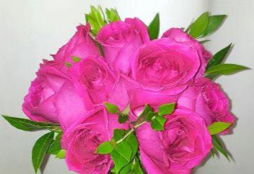 Pop Of Pink Bridal Bouquet