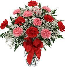 Pop's carnations arranged
