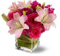 Posh Pinks Flowers Birthday for everyone