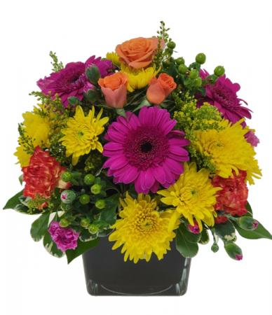 Pot O Petals Container Arrangement