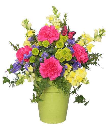 POT O' POSIES Flower Arrangement