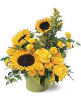 Pot of Sunshine Flower Arrangement