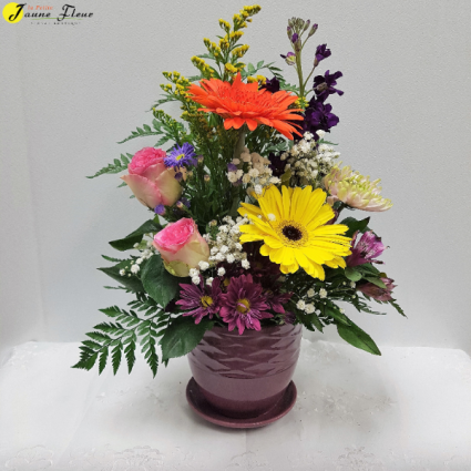 General-Potted Blooms color of pots or flowers are based on availability