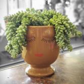 Potted Succulent Face Pot