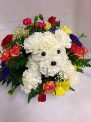 Pouncing Puppy Arrangement  in Detroit Lakes, MN | DETROIT LAKES FLORAL