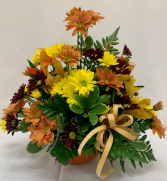 PPCFG Fall Daisies Fresh Arrangement