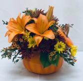 PPCFG Fall Pumpkin Fresh Arrangement