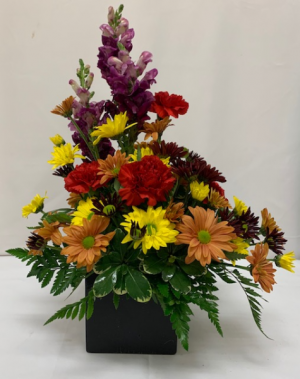 PPCFG Fall Special Fresh Arrangement in Plantation, FL | Pink Pussycat Flower and Gift Shop