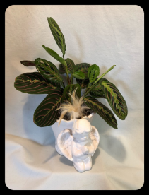 Praying Angel Planter