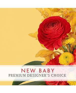 Precious New Baby Premium Designer's Choice in Youngstown, OH | BLOOMING CRAZY FLOWERS AND GIFTS