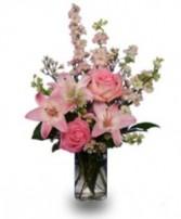 Precious Pink Arrival  Arrangement